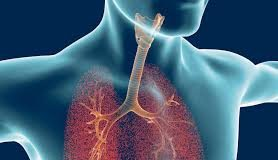 After what to know that we have laryngitis or tracheitis?