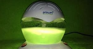 Prowin air bowl- inhaltsstoffe - erfahrungsberichte - bewertungen