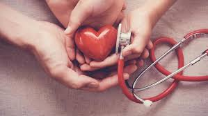 Cardiol - in apotheke - bei dm - in deutschland - in Hersteller-Website? - kaufen