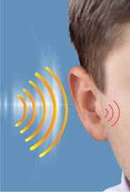 Audisin maxi ear sound - anwendung - bewertungen - inhaltsstoffe - erfahrungsberichte