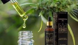 Cannabisvital Oil - erfahrungsberichte - anwendung - inhaltsstoffe - bewertungen